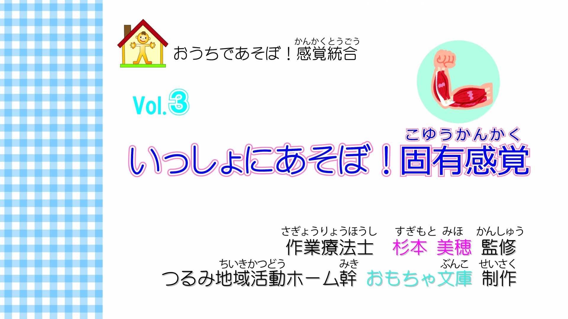ひらがなver. おうちであそぼ!感覚統合Vol.3